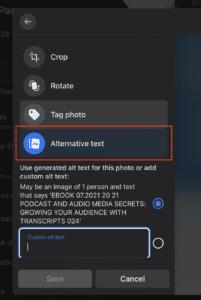 Custom alternative text